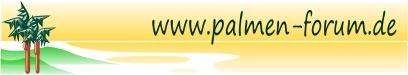 Palmen-Forum